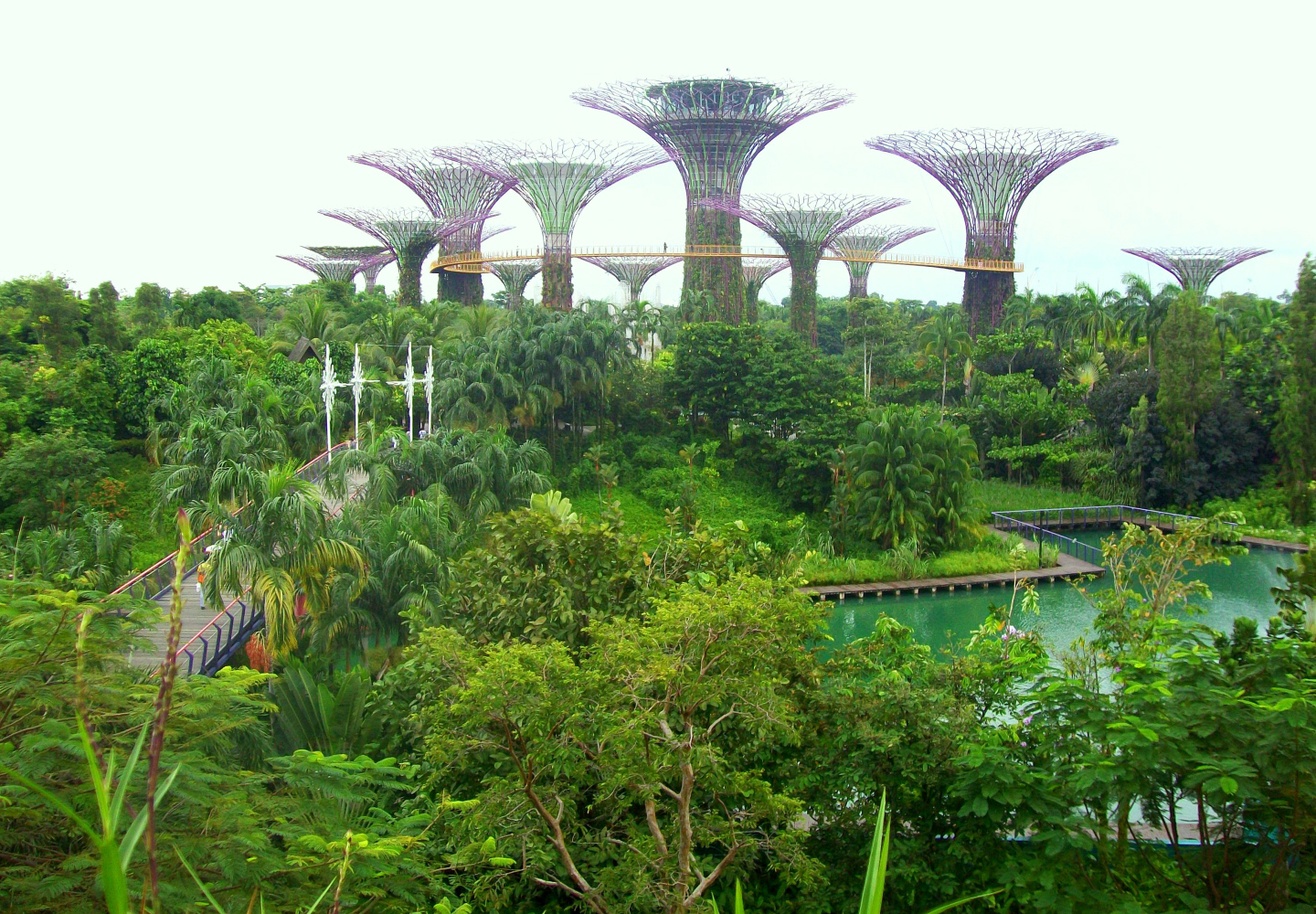 """Gardens by the Bay"" -  Aboreal Walkway & Towers for Vines -Singapore"
